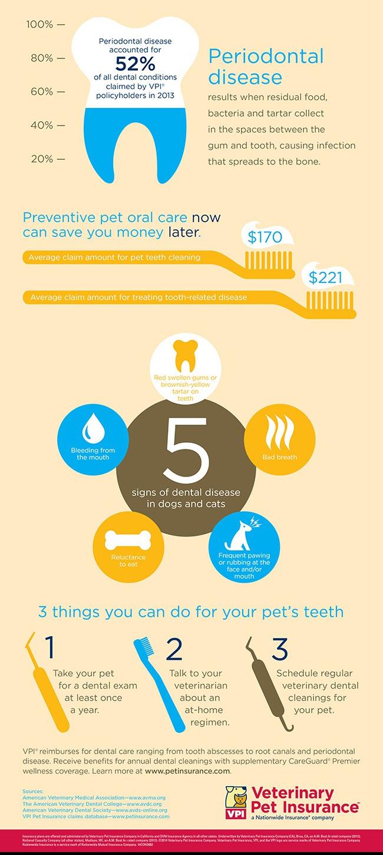 2682_Pet Dental Month Info Graphic Update 650x2218